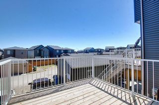 Photo 45: 26 Evanscrest Heights NW in Calgary: Evanston Detached for sale : MLS®# A1127719