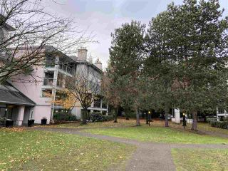 """Photo 23: PH1A 7025 STRIDE Avenue in Burnaby: Edmonds BE Condo for sale in """"SOMERSET HILL"""" (Burnaby East)  : MLS®# R2518301"""