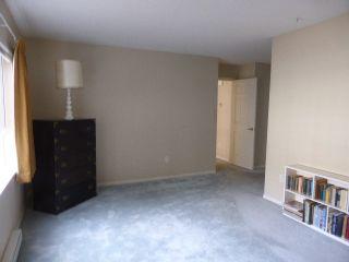 Photo 14: 202 3670 BANFF CRT Court: Northlands Home for sale ()  : MLS®# V1113079