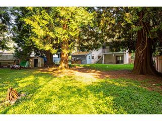 "Photo 38: 3625 208 Street in Langley: Brookswood Langley House for sale in ""Brookswood"" : MLS®# R2496320"