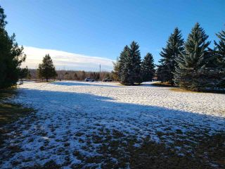 Photo 32: 6 53420 RGE RD 274: Rural Parkland County House for sale : MLS®# E4235414