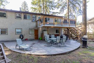 "Photo 14: 20207 43 Avenue in Langley: Brookswood Langley House for sale in ""BROOKSWOOD"" : MLS®# R2566996"