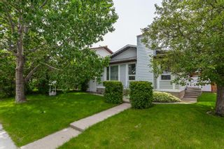 Main Photo: 4123 55 Street NE in Calgary: Temple Detached for sale : MLS®# A1105877