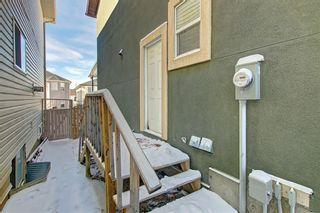 Photo 39: 81 SADDLECREST Park NE in Calgary: Saddle Ridge Detached for sale : MLS®# C4290760