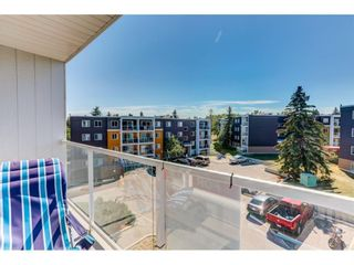 Photo 12: 401 4455D Greenview Drive NE in Calgary: Greenview Apartment for sale : MLS®# A1131157