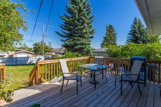 Photo 22: 4628 3 Street NE in Calgary: Greenview Detached for sale : MLS®# A1128741