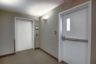Photo 30: 8307 70 Panamount Drive NW in Calgary: Panorama Hills Apartment for sale : MLS®# A1087001