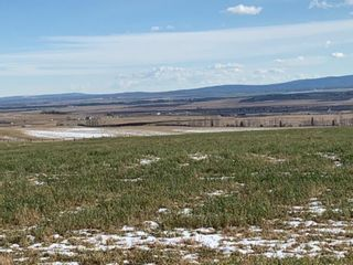 Photo 6: 43062 TOWNSHIP ROAD 250 in Rural Rocky View County: Rural Rocky View MD Land for sale : MLS®# A1042976
