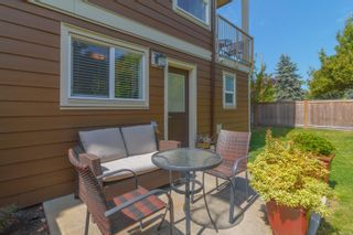 Photo 25: 3 2923 Shelbourne St in : Vi Oaklands Row/Townhouse for sale (Victoria)  : MLS®# 850799