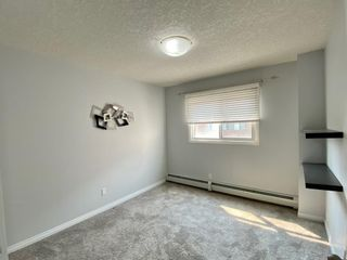 Photo 6: 404 823 19 Avenue SW in Calgary: Lower Mount Royal Apartment for sale : MLS®# A1129212