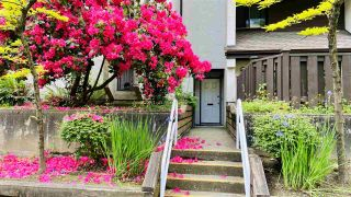 Photo 6: 4 385 GINGER DRIVE in New Westminster: Fraserview NW Condo for sale : MLS®# R2464824