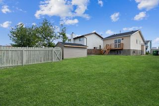 Photo 37: 23 Erin Meadows Court SE in Calgary: Erin Woods Detached for sale : MLS®# A1146245