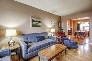 Photo 16: 156 North Cameron Avenue in Hamilton: House for sale : MLS®# H4042423
