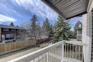 Photo 17: 7 3800 Fonda Way SE in Calgary: Forest Heights Row/Townhouse for sale : MLS®# A1090503