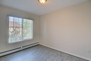Photo 32: 201 4407 23 Street in Edmonton: Zone 30 Condo for sale : MLS®# E4254389
