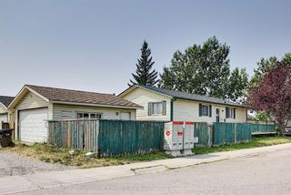 Photo 42: 180 Castledale Way NE in Calgary: Castleridge Detached for sale : MLS®# A1135509