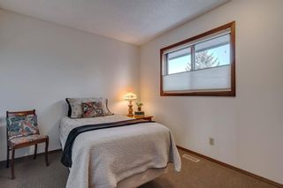 Photo 29: 239 Douglasbank Drive SE in Calgary: Douglasdale/Glen Detached for sale : MLS®# A1050993