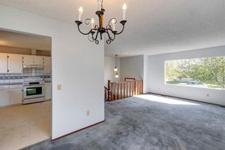 Photo 10: 40 Rundlewood Bay NE in Calgary: Rundle Detached for sale : MLS®# A1141150