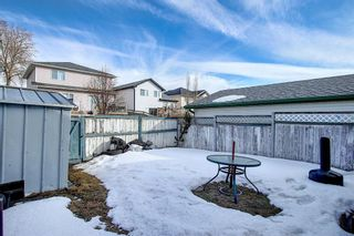 Photo 46: 148 Arbour Wood Mews NW in Calgary: Arbour Lake Detached for sale : MLS®# A1079905