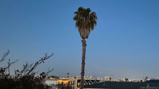 Photo 33: POINT LOMA Condo for sale : 2 bedrooms : 3118 Canon St #6 in San Diego