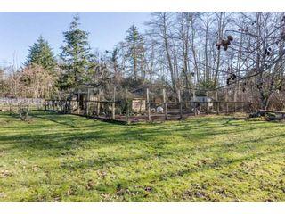 Photo 17: 16910 23RD Avenue in Surrey: Pacific Douglas House for sale (South Surrey White Rock)  : MLS®# R2136702