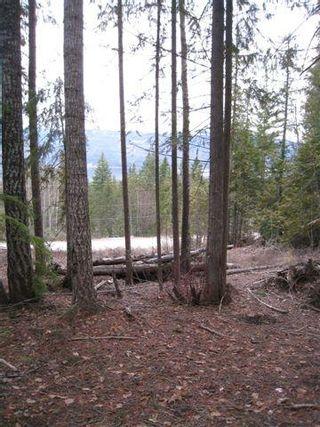 Photo 4: 141 Estate Drive in Anglemont: North Shuswap Land Only for sale (Shuswap/Revelstoke)  : MLS®# 10002849