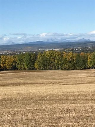 Photo 13: 31-33048 Range Road 51: Rural Mountain View County Residential Land for sale : MLS®# A1085957