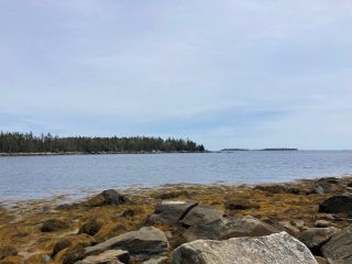 Photo 2: Lot Mushaboom Road in Mushaboom: 35-Halifax County East Vacant Land for sale (Halifax-Dartmouth)  : MLS®# 202114485