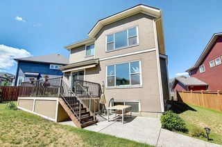 Photo 44: 143 STONEMERE Green: Chestermere Detached for sale : MLS®# A1123634