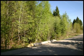 Photo 22: 21 6500 Southwest 15 Avenue in Salmon Arm: Panorama Ranch Vacant Land for sale : MLS®# 10230290