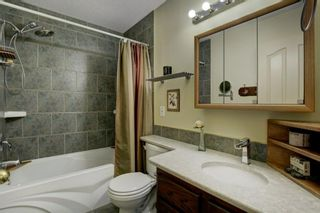 Photo 16: 14 Crystal Ridge Cove: Strathmore Semi Detached for sale : MLS®# A1142513