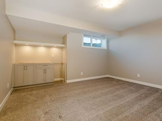 Photo 24: 66 Skyview Parade NE in Calgary: Skyview Ranch Row/Townhouse for sale : MLS®# A1053278