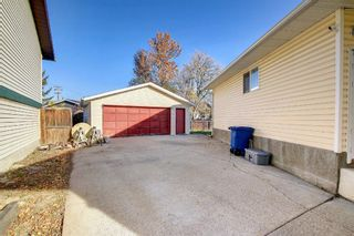 Photo 47: 317 Big Springs Court SE: Airdrie Detached for sale : MLS®# A1152002
