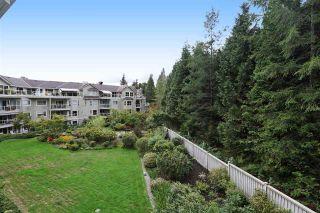 Photo 5: 305 1283 PARKGATE AVENUE in North Vancouver: Northlands Condo for sale : MLS®# R2214506