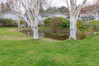 Photo 27: 5074 Cordova Bay Rd in VICTORIA: SE Cordova Bay House for sale (Saanich East)  : MLS®# 810941