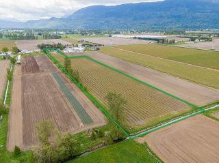Photo 1: 5111 TOLMIE Road in Abbotsford: Sumas Prairie House for sale : MLS®# R2573312