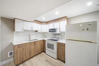 Photo 16: 182 Doverglen Crescent SE in Calgary: Dover Semi Detached for sale : MLS®# A1142371