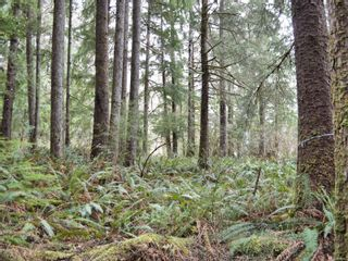 Photo 18: W1/2 SW&NW1/4 Quatsino Sound in : NI Port Hardy Land for sale (North Island)  : MLS®# 866764