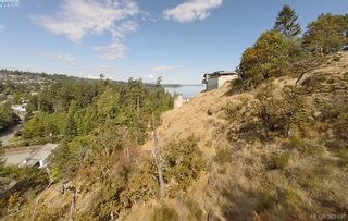 Photo 6: 4732 Treetop Hts in VICTORIA: SE Cordova Bay Land for sale (Saanich East)  : MLS®# 770118