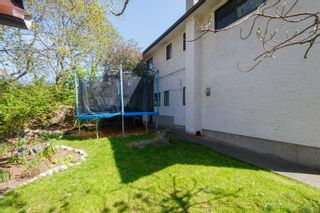 Photo 40: 3662 Dartmouth Pl in : SE Maplewood House for sale (Saanich East)  : MLS®# 874990