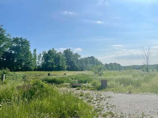 Photo 12: 664 Lake Dalrymple Road in Kawartha Lakes: Rural Carden House (Bungalow) for sale : MLS®# X5274471