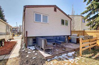 Photo 26: 136 Abingdon Way NE in Calgary: Abbeydale Detached for sale : MLS®# A1097346