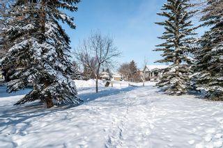 Photo 36: 156 Douglasbank Mews in Calgary: Douglasdale/Glen Detached for sale : MLS®# A1067908