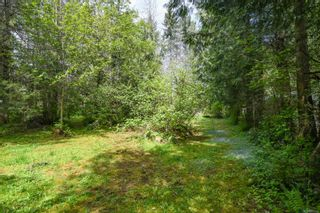 Photo 42: 3534 Royston Rd in : CV Courtenay South House for sale (Comox Valley)  : MLS®# 875936