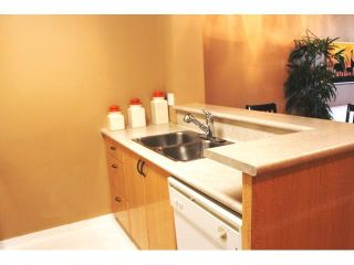 """Photo 5: 309 2763 CHANDLERY Place in Vancouver: Fraserview VE Condo for sale in """"RIVER DANCE"""" (Vancouver East)  : MLS®# V1098255"""