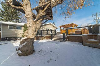 Photo 27: 12204 Canfield Road SW in Calgary: Canyon Meadows Detached for sale : MLS®# A1049030