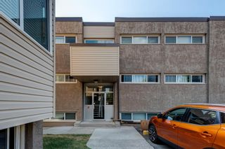 Main Photo: 224 8235 ELBOW Drive SW in Calgary: Chinook Park Apartment for sale : MLS®# A1119442