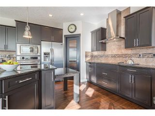 Photo 7: 12 ROCKFORD Terrace NW in Calgary: Rocky Ridge House for sale : MLS®# C4050751