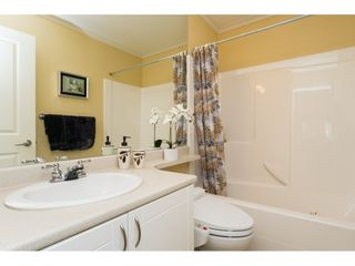 """Photo 17: 26 17516 4TH Avenue in Surrey: Pacific Douglas Townhouse for sale in """"Douglas Point"""" (South Surrey White Rock)  : MLS®# R2129004"""