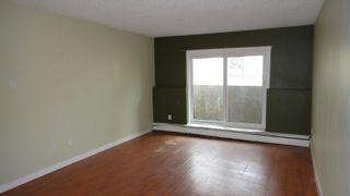 Photo 2:  in Edmonton: Zone 12 Condo for sale : MLS®# E4266506